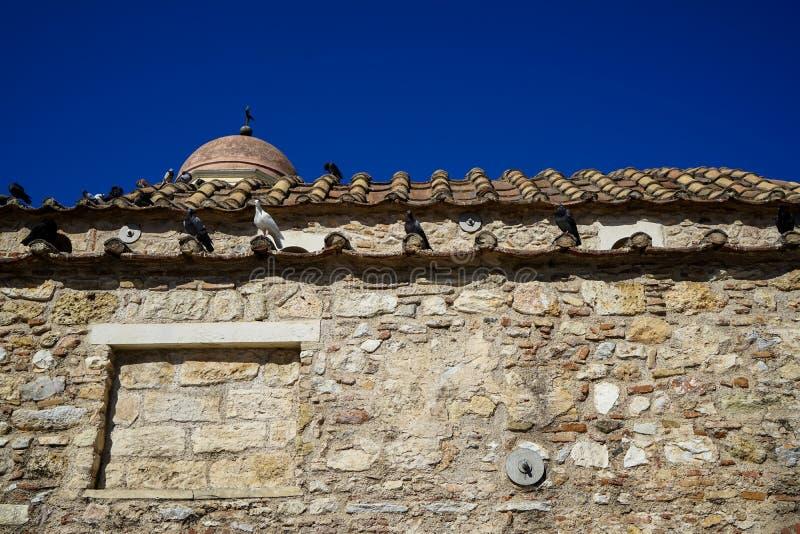 老经典小的教会场面地球口气自然石头的与在赤土陶器瓦的鸽子有清楚的蓝天背景 免版税库存照片