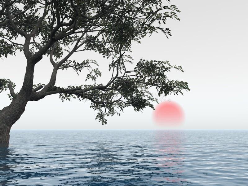 老结构树 库存例证