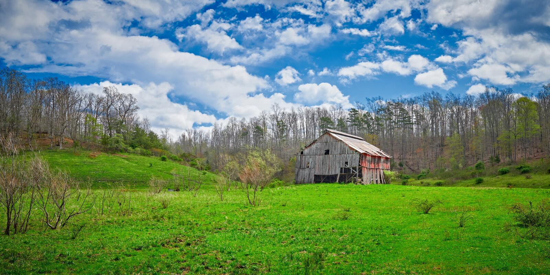 老肯塔基烟草谷仓在早期的春天 免版税库存图片