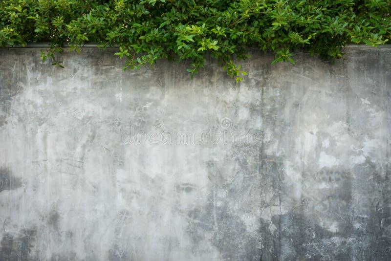 老脏的纹理,灰色混凝土墙 免版税图库摄影