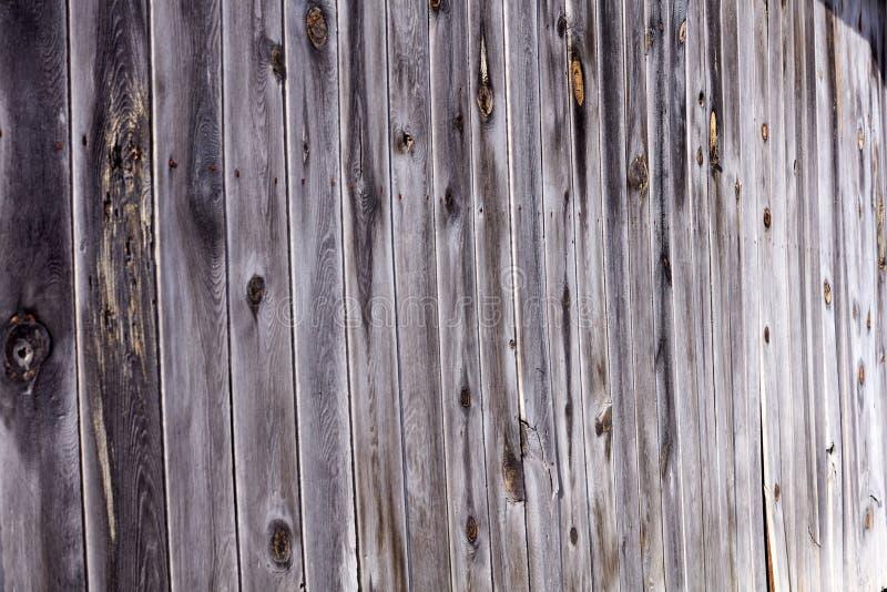 老自然被风化的木篱芭 图库摄影