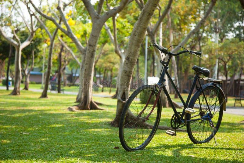老自行车在公园。 库存照片