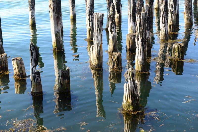 老船坞打桩在镇静海洋水域中 库存照片