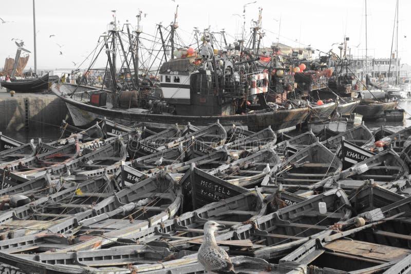 老船,索维拉,摩洛哥港  免版税库存图片