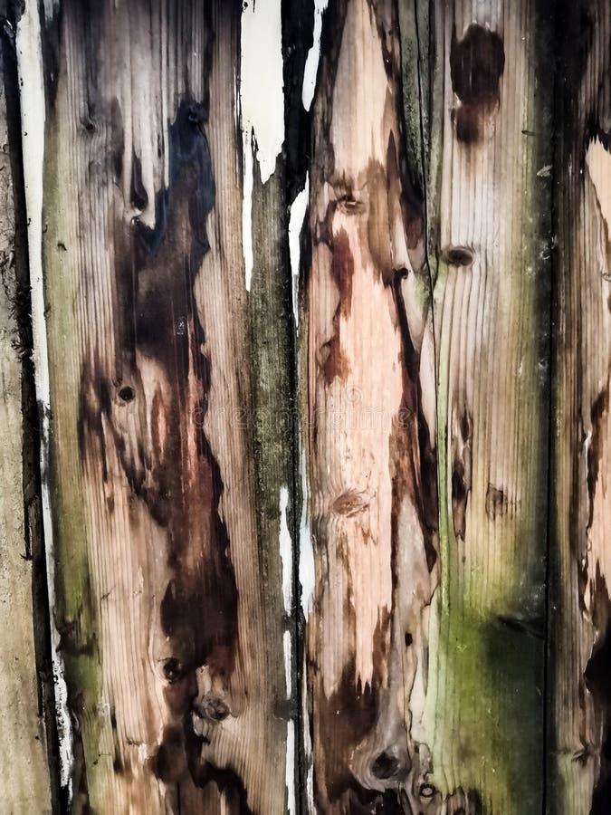 老葡萄酒变老了难看的东西黑褐色,并且灰色木地板板条构造背景 库存图片
