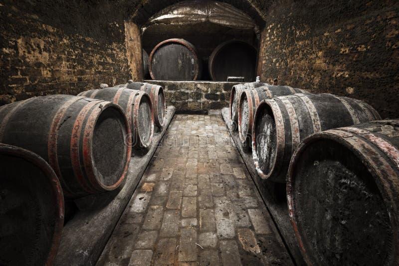 老葡萄酒库的内部,桶 免版税库存照片