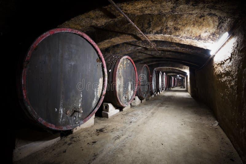 老葡萄酒库的内部,桶 库存照片