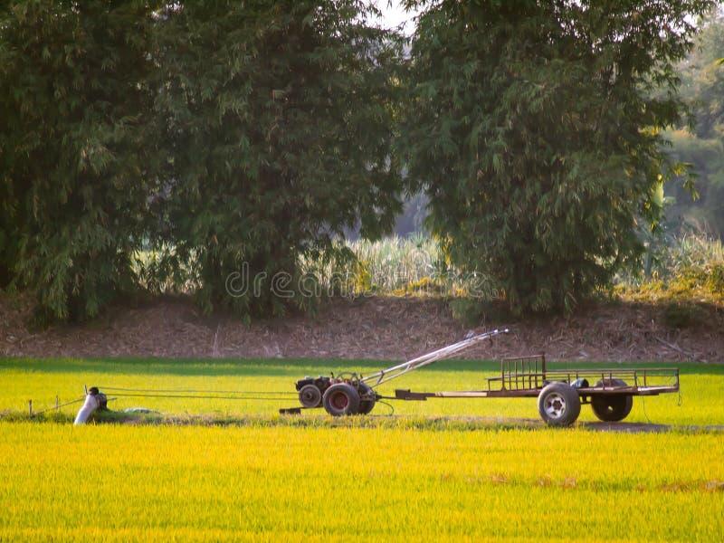 老葡萄酒拖拉机,拍摄在农业领域在夏天期间 生长的收获黄色季节 库存图片