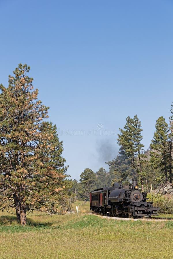 老蒸汽机车通过树 免版税库存图片