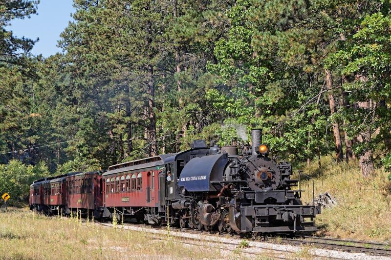 老蒸汽火车在森林里 库存图片