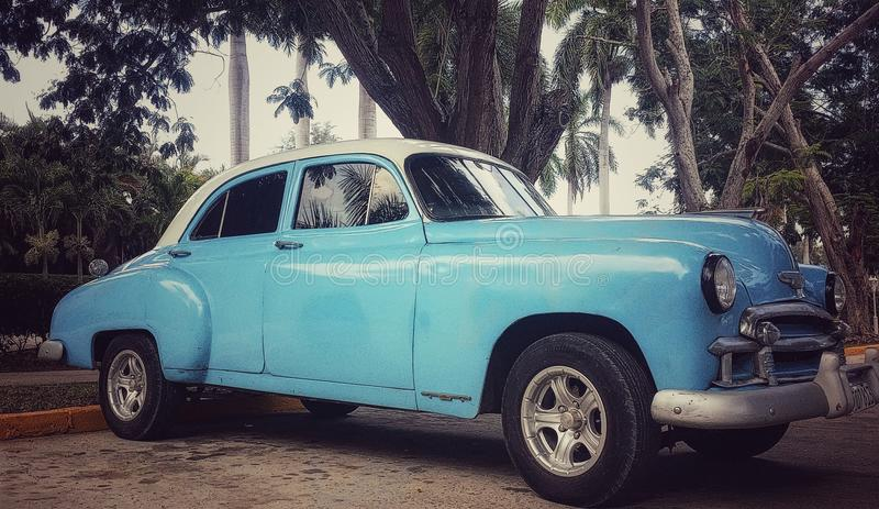 老蓝色汽车的特写镜头图象在古巴手段的绿色树下 库存照片