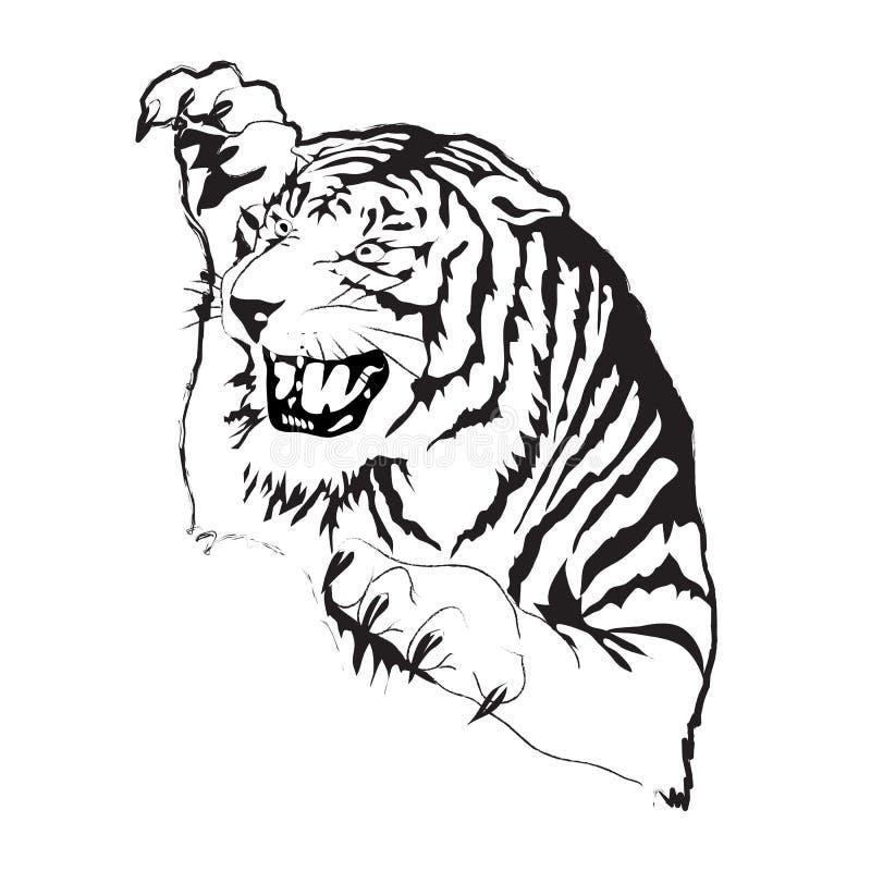 老虎传染媒介剪影 库存例证