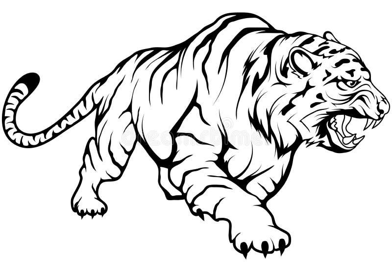 老虎传染媒介图画,老虎在充分的成长,在黑白的蹲下的老虎的图画剪影 向量例证