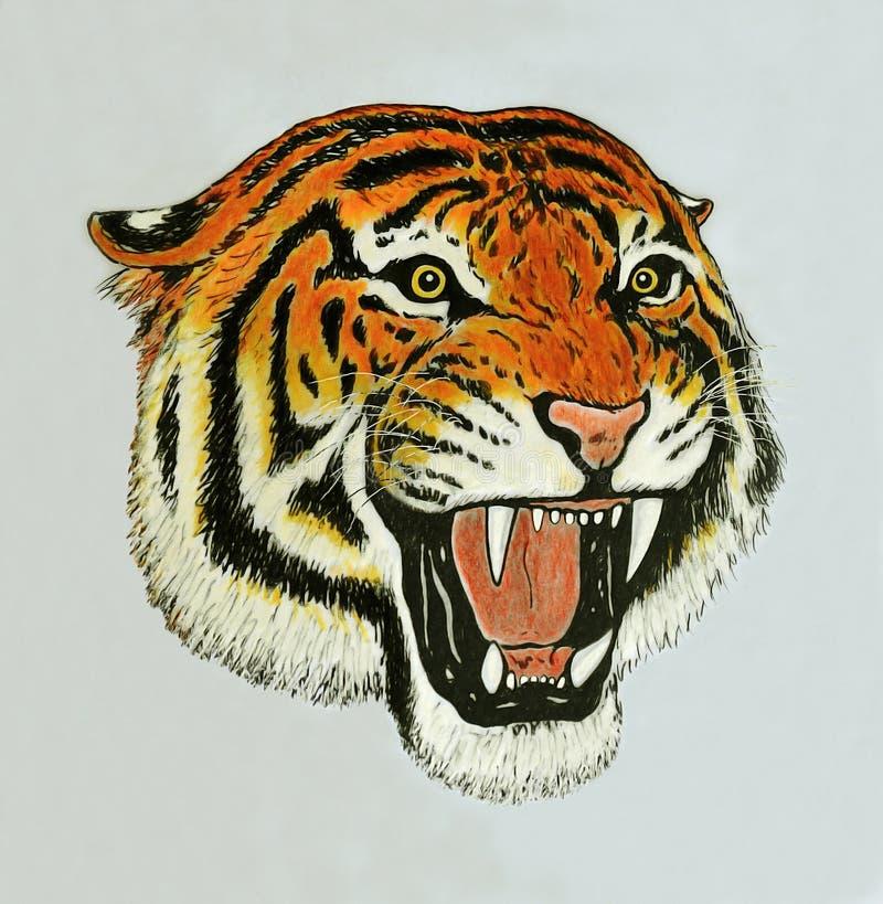 老虎吼声图画 库存例证