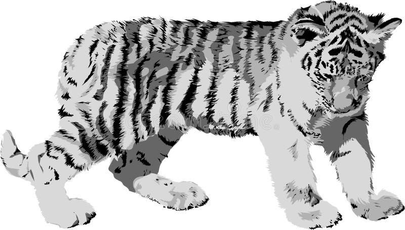 老虎年轻人 向量例证