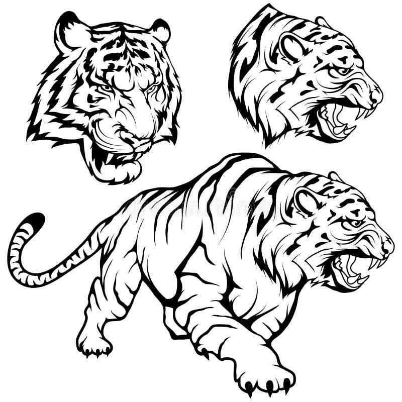 老虎集合适当作为商标或队吉祥人,老虎在充分的成长,在黑白的蹲下的老虎的图画剪影 皇族释放例证