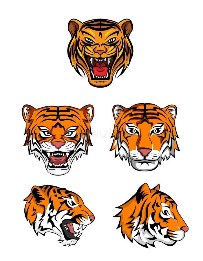 老虎顶头收藏 皇族释放例证
