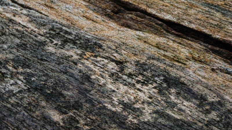 老被仿造的木纹理样式 库存图片