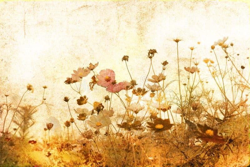 老被塑造的花 向量例证