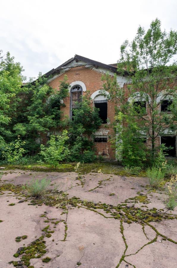 老被放弃的房子 没有房客的议院 垂直的框架 库存图片