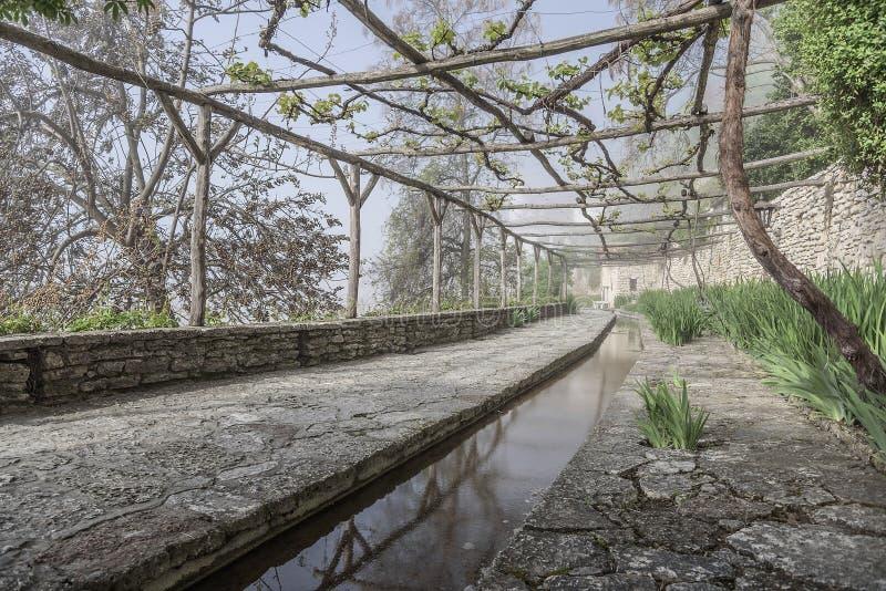 老被放弃的橘园 免版税库存图片