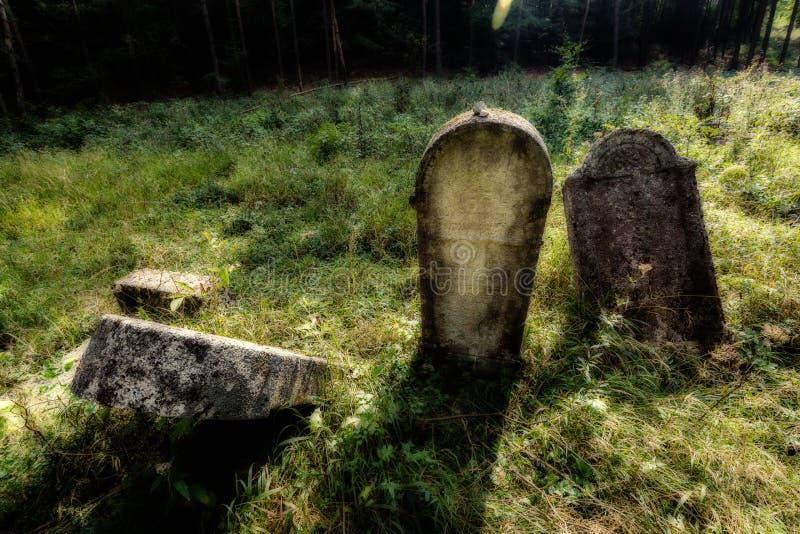 老被放弃的犹太公墓 被弄脏的作用例证 库存例证