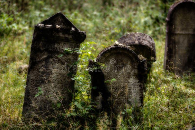 老被放弃的犹太公墓 被弄脏的作用例证 向量例证