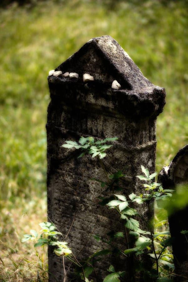 老被放弃的犹太公墓 被弄脏的作用例证 皇族释放例证