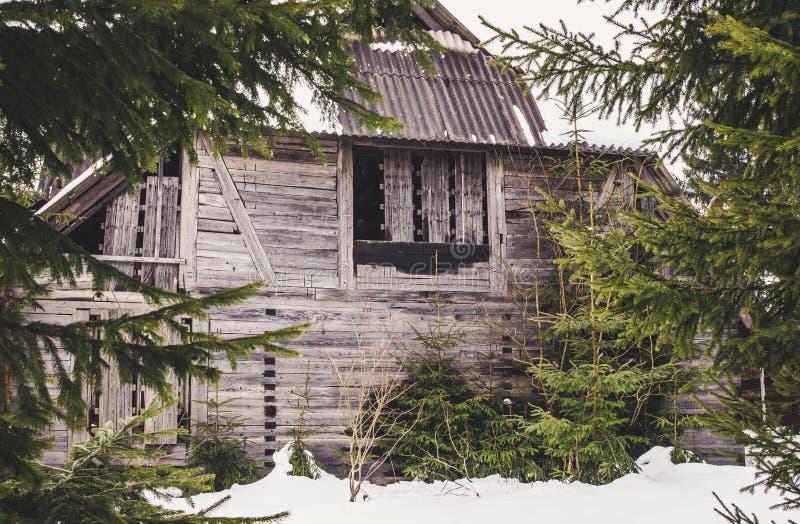 老被放弃的神奇房子在森林里 免版税库存照片