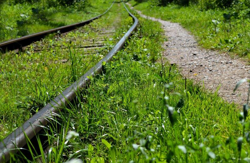 老被放弃的铁路长满与草 图库摄影