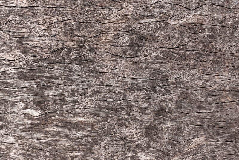 老被风化的难看的东西生锈的木盘区背景设计的 老木头无缝的纹理  图库摄影
