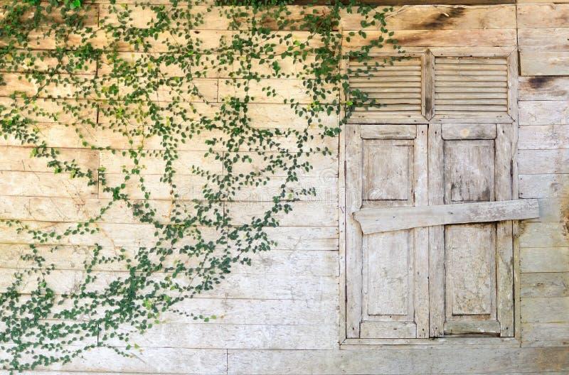 老视窗木头 免版税库存图片