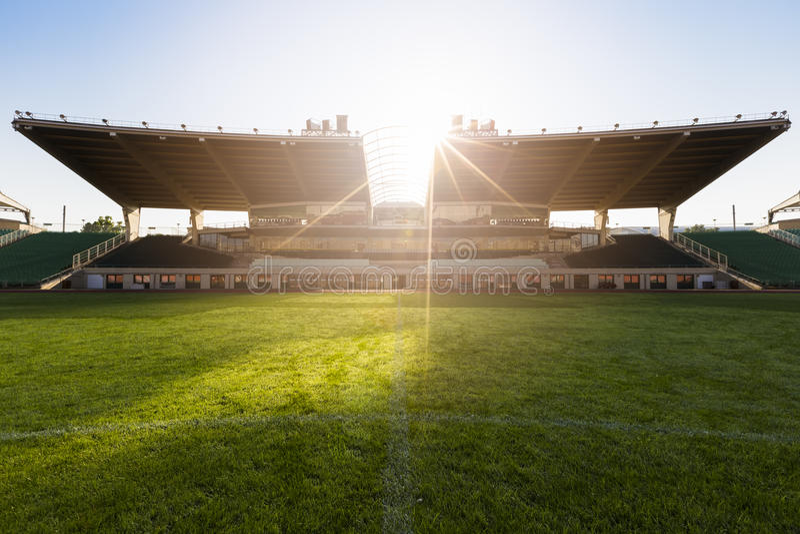 老足球场 库存图片