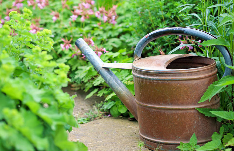 老铁喷壶在庭院里 免版税图库摄影