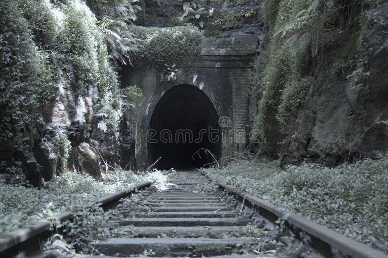 老铁路隧道 免版税库存图片