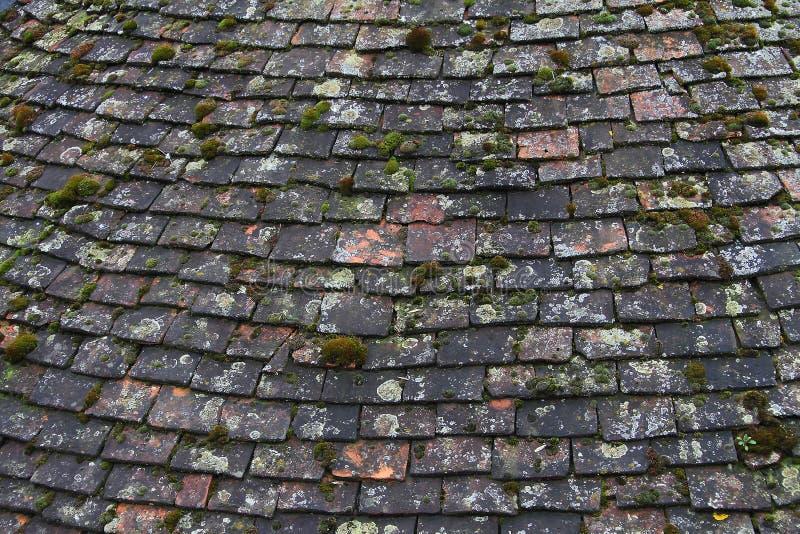老铺磁砖的屋顶 免版税库存图片