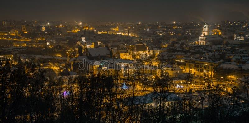 老镇维尔纽斯冬天空中全景  免版税库存照片