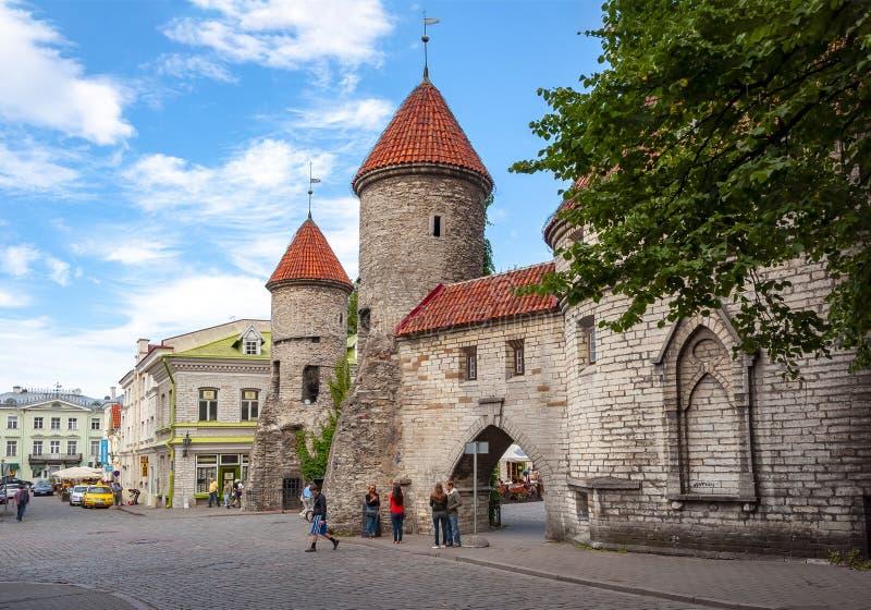 老镇Vanalinn,爱沙尼亚墙壁和街道  库存照片