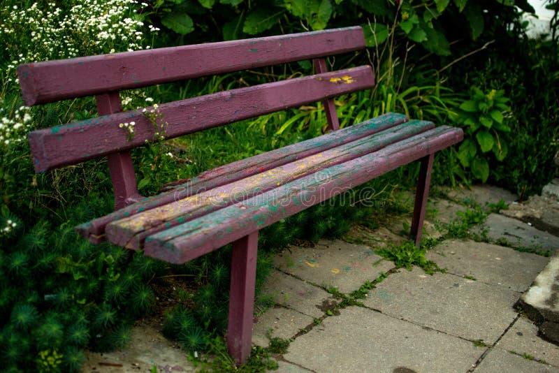 老长凳就座 库存照片