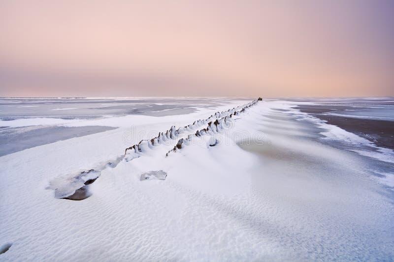 老防堤在雪之下的北海 免版税库存照片