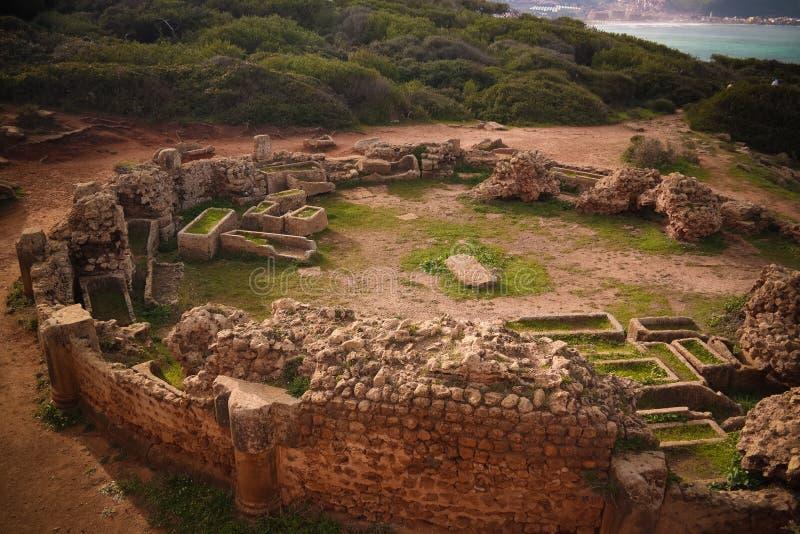 老陵墓废墟在Tipasa,阿尔及利亚 库存图片