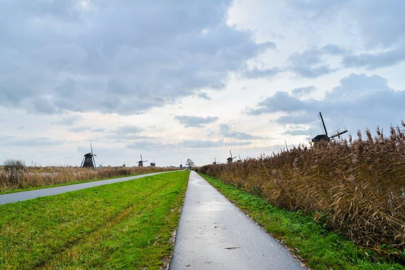 老风车在日出的小孩堤防,荷兰,荷兰, EU 库存图片