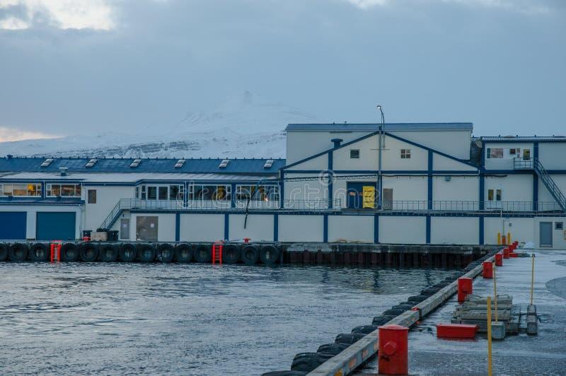老鱼工厂在冰岛 免版税库存图片