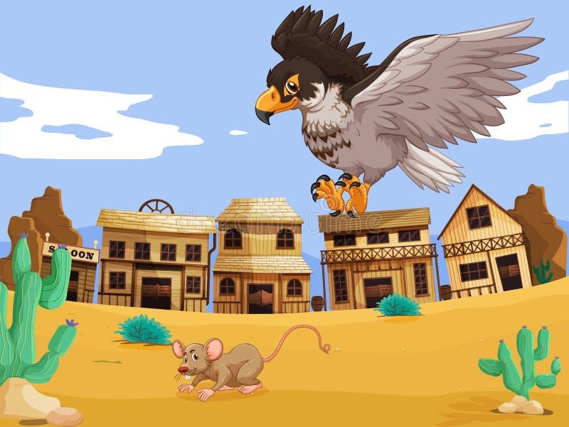 老鹰传染性的鼠在沙漠 库存例证