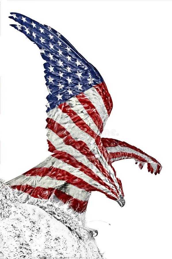 老鹰和美国国旗号衣 免版税库存照片