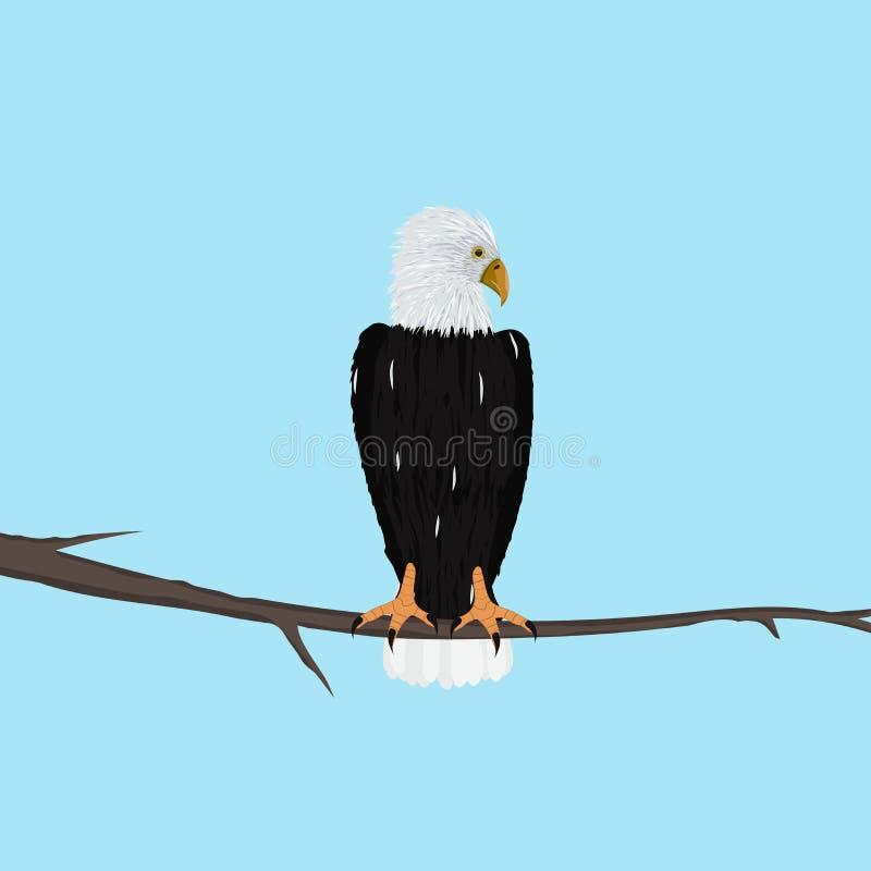 老鹰坐分支反对轻的背景 库存例证