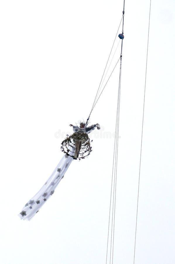 老鹰的飞行,关闭,威尼斯 免版税库存照片