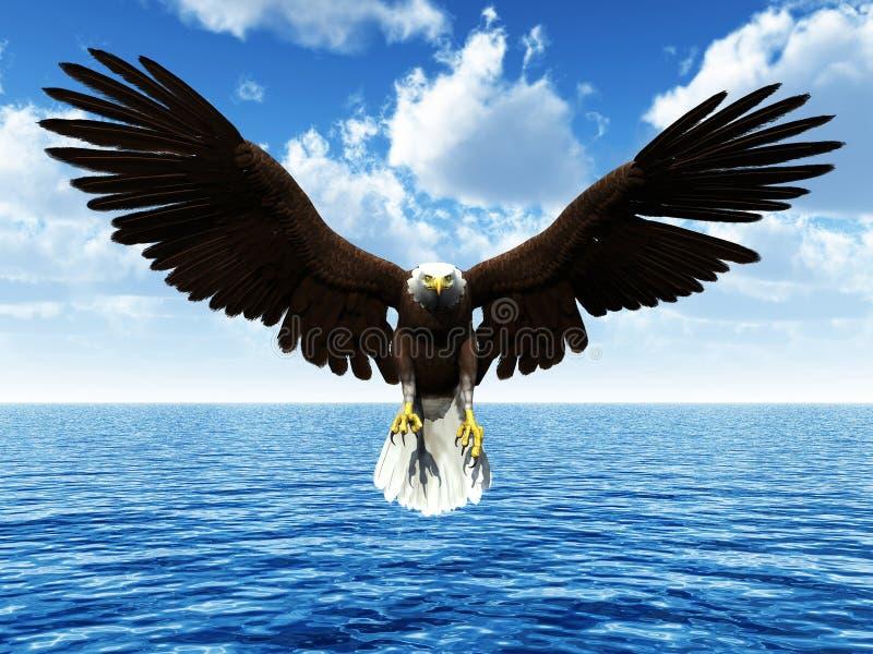 老鹰着陆海洋 皇族释放例证