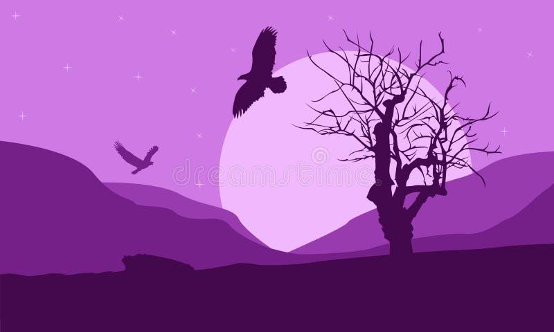 老鹰背景夜 库存图片