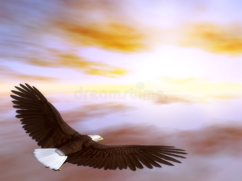 老鹰腾飞 向量例证